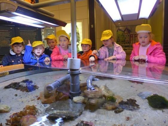 Besuch Ausstellung Meer erleben (4)