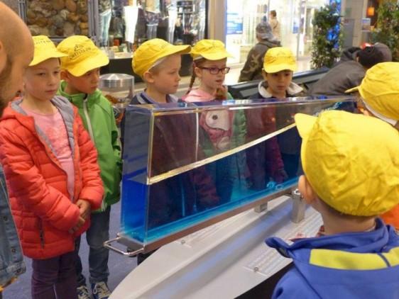 Besuch Ausstellung Meer erleben (9)